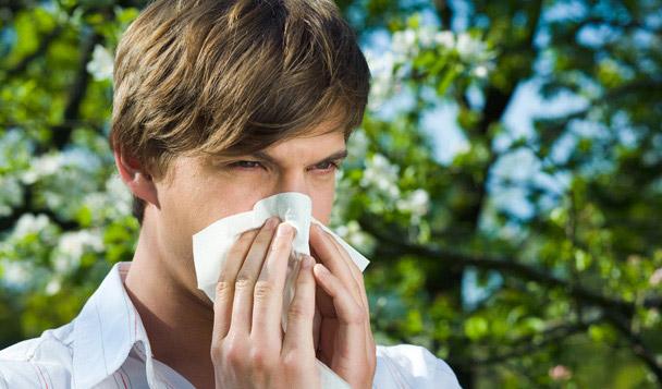 Heuschnupfen: Behandlungstipps für Pollenallergiker