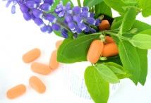 Pflanzliche Arzneimittel