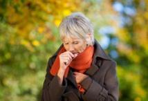 Allergien Ursachen