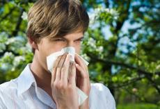 Natürliche Heilmittel gegen Allergien